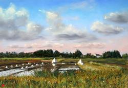 Marais salant à Saint Armel Pastel 35x50