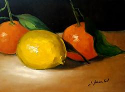 Clémentines et citron H15x20