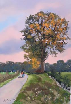 Le chêne Pastel 20x25