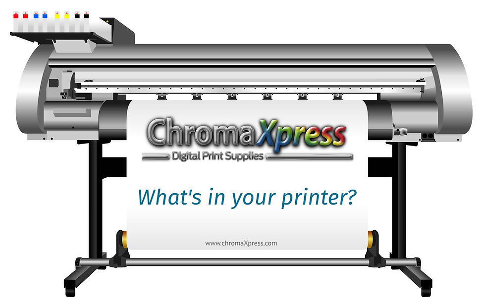 What's in your printer - eco sol.jpg