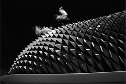 Aardvark roof x