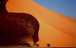 Namib duin 45