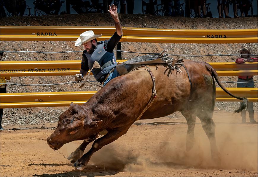 MR-003-Rodeo 3-2747