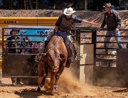 MR-002-Rodeo 2-2747