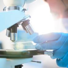 NIH Study PEMF and Cancer