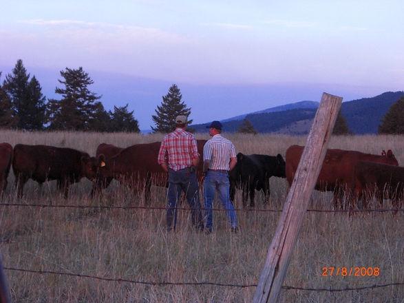 Father & Son talkin bull.jpg