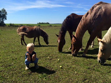 Jeffrey has been a natural with the horses and enjoys helping mom tend to them - sometimes enjoying the treats himself.