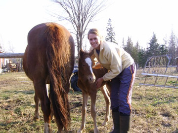 Megan and one of her young foals 'Sprout' on her parents' cattle farm in northern MN.