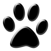 dog-parks1_b.jpg