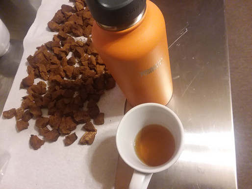 How and Why to Brew Chaga Tea