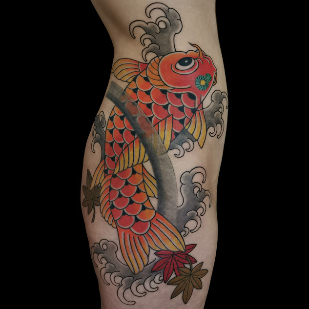 Upstream koi on side