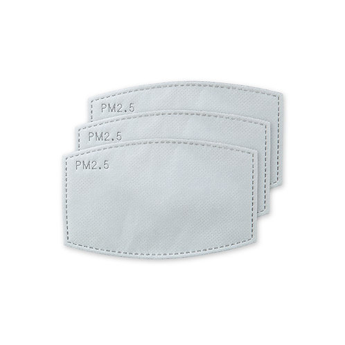 Adult PM 2.5 Protective Mask Filter (10)