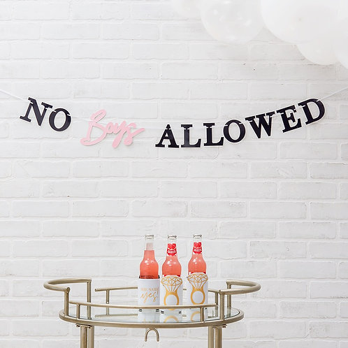 Party Banner - No boys Allowed