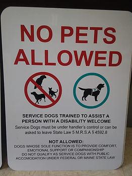 No Pets Allowed FINAL.jpg