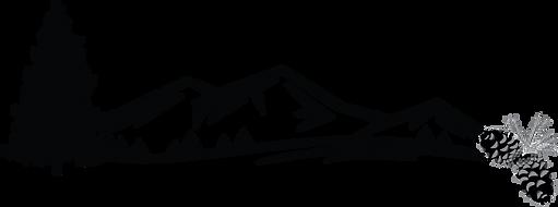 NCC_logo 1 bw.png