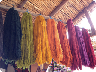 Cochineal: the ingredient to make red dye wool in the Andes