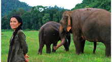 Learning from our human and elephant brothers and sisters
