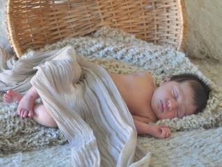 Stella - 7 days old
