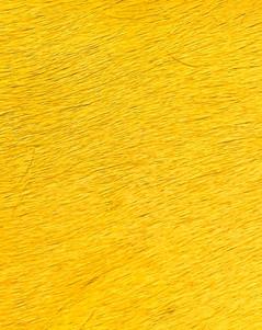 Sólido Flúor Yellow