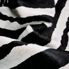 Zebra Safari Preta e Branca