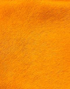 Sólido Flúor Orange