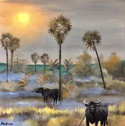 Buffalos, acryl sur toile, 50 x 50 cm, 2020