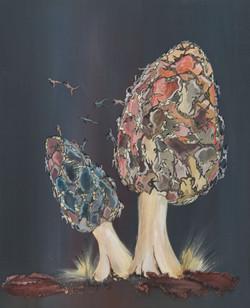 Les morilles, acryl sur toile, 70 x 50 cm
