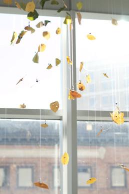 16,方小龙·装置·自然树叶·《落叶归根》15·尺幅可变.jpg