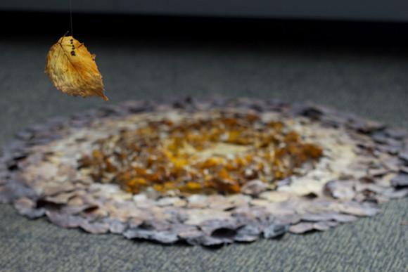13,方小龙·装置·自然树叶·《落叶归根》12·尺幅可变.jpg
