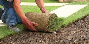 ann-arbor-grass-sod-installation.jpg