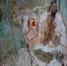 Red Duck Bulu, Sipong