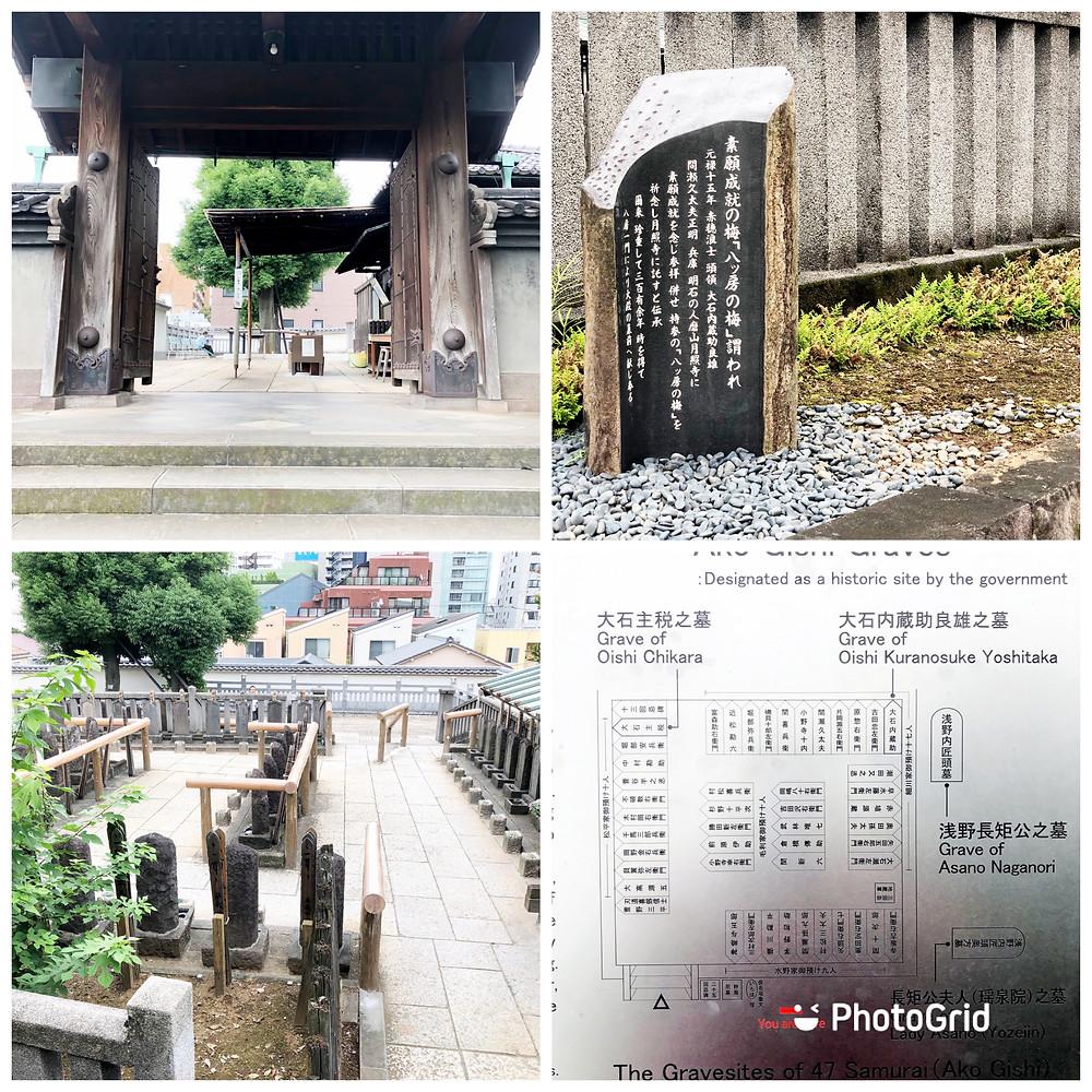 47 Ronin'in mezarlarının bulunduğu Tokyo'da yer alan Sangaku-ji Tapınağına 2019 yılında düzenlediğimiz geziden bir kesit