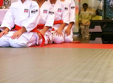 3-6 Yaş Çocuk Gelişiminde Aikido Eğitimi