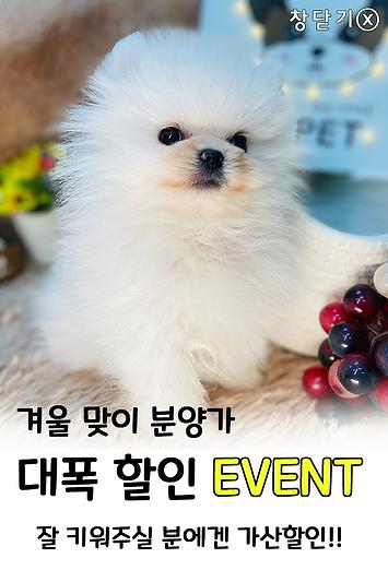 이벤트팝업창.png