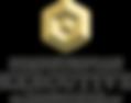 scand.ex.inst. logo.png