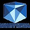 logo til some transperant.png