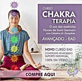 CHAKRAS_600X600(250X250)_SITE.jpg