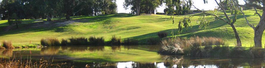 Yarrambat Park Golf