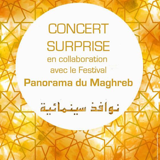 l_panorama-des-cinemas-du-maghreb-et-du-