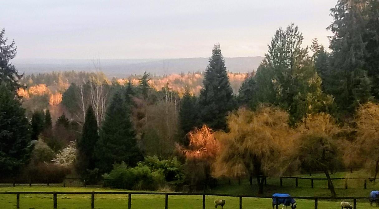 Sunset at Le Phantom Farm