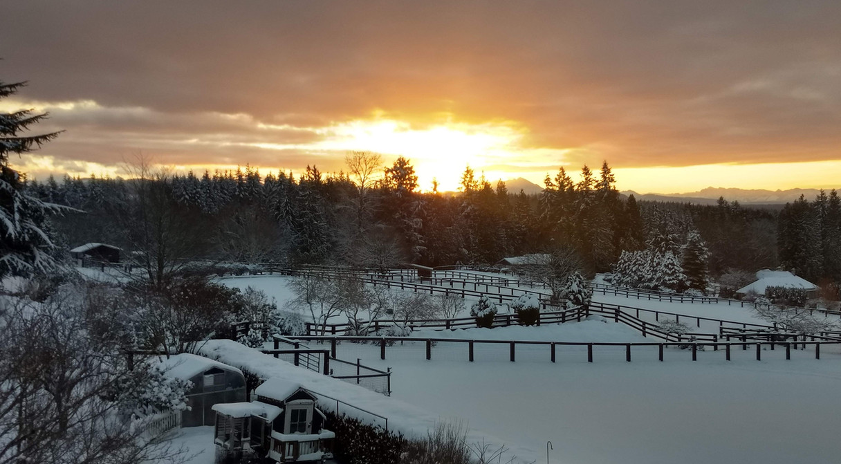 Sunsets in winter snow.