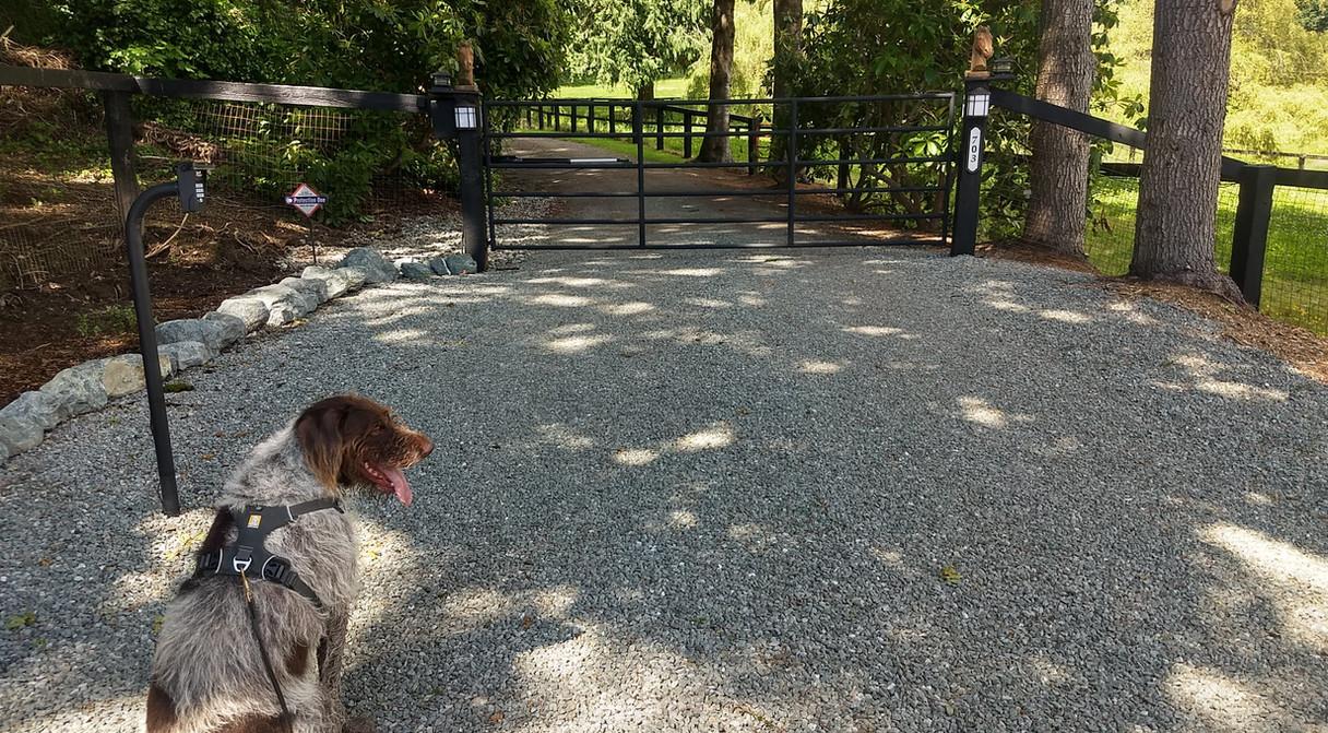 Trigger at the entrance of Le Phantom Farm.