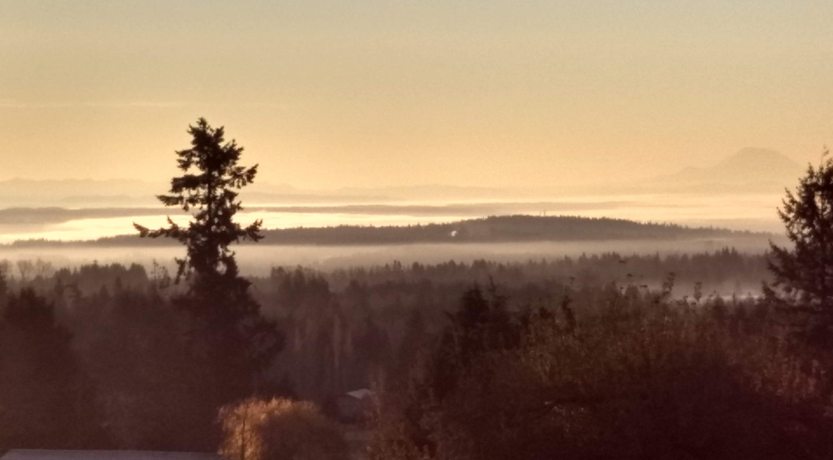 Sunrise with mist in the valley and Mt.Rainier peaking thru in all its glory...