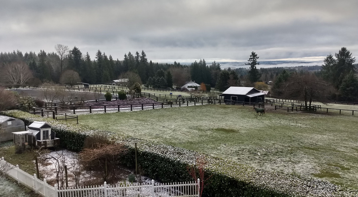 First dusting of snow 2019