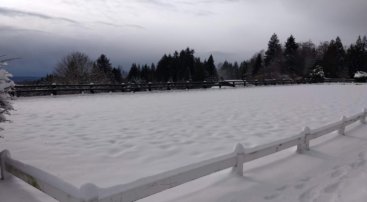 Beautiful snow-filled 66 x 198 outdoor arena.