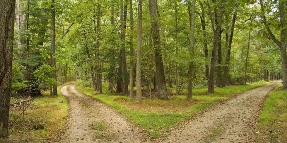 Choosing YOUR Path to Hashem