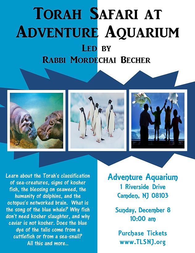 Aquarium Trip wirh Rabbi Mordechai Beche