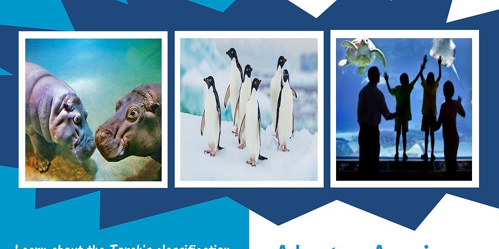 Adventure Aquarium Tour