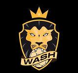 WASH Logo noir.jpg