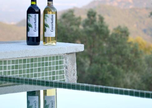 DianaKei-Design-Coworkationvine bottle.j